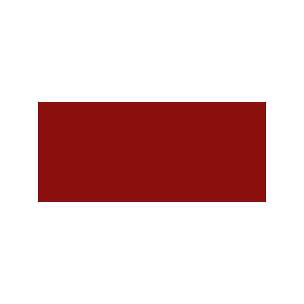 PalazzoSantaMaria Logo