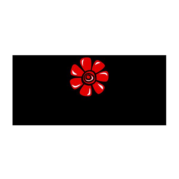 Cosmosyr Logo